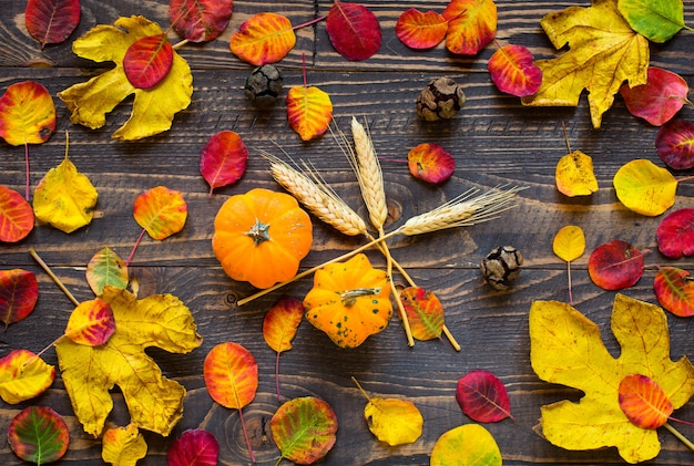Colorful autumn leaves over a wooden background