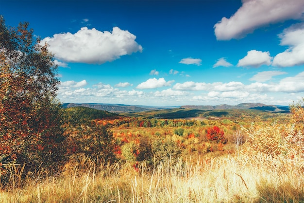 Colorful autumn rural landscape and blue sky with cumulus clouds