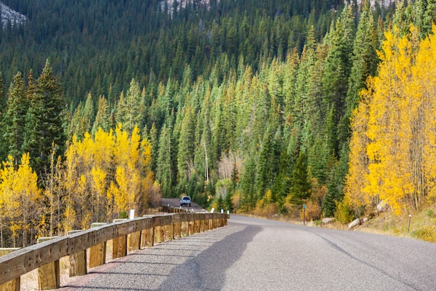 Colorful autumn scene on countryside road in the sunny morning in sierra nevada area