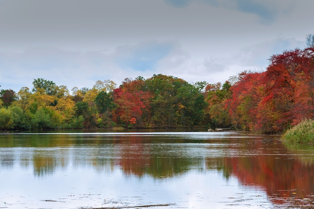 Красочные осенние деревья на озере