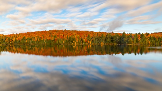 Colorful autumn trees reflections on the lake
