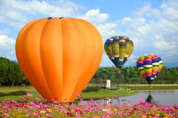 Colorful balloon and cosmos field.