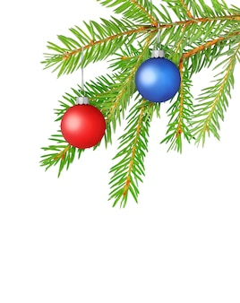 Colorful balls on fir tree branch, christmas decoration isolated on white surface