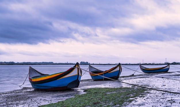 Разноцветные лодки ловят водоросли (moliceiros на португальском) в риа-де-авейру, португалия