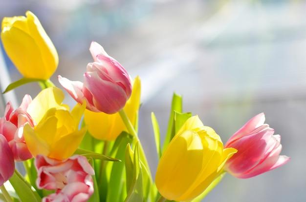 Красочный букет из тюльпанов на фоне окна, желтых и розовых цветов