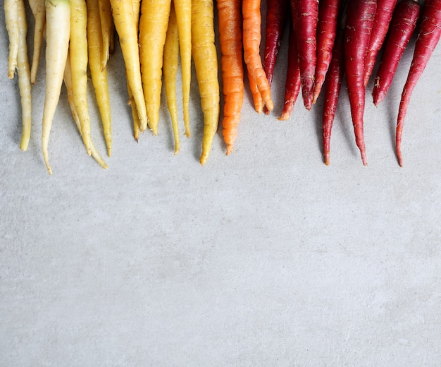 Colorful carrots on concrete background