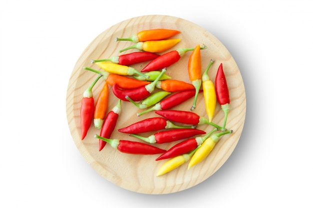 Colorful chili peppers plate isolated