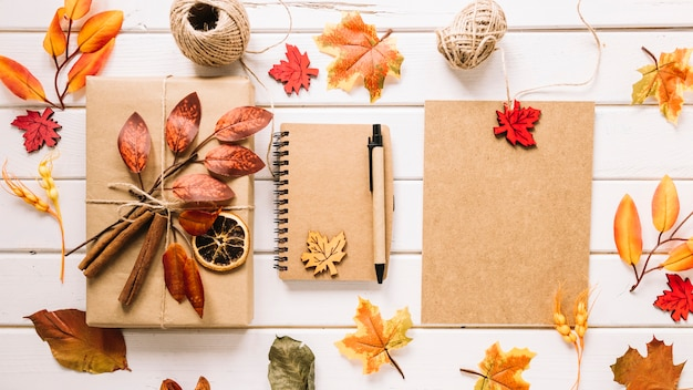 Colorful composition with autumn leaves, gift and notebook
