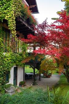 オーストリアのザルツカンマーグート市の植物のあるカラフルな中庭