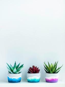 コピー スペースのある白い壁に白い木製の棚に緑と赤の多肉植物が付いたカラフルな diy の丸いコンクリート ポット。ユニークなカラフルな色で塗装されたセメント プランター、縦型。