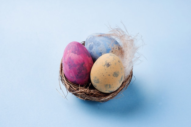 Colorful easter egg in the nest on blue background