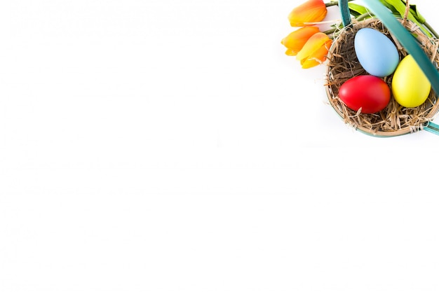 Colorful easter egg in nest isolated, top view