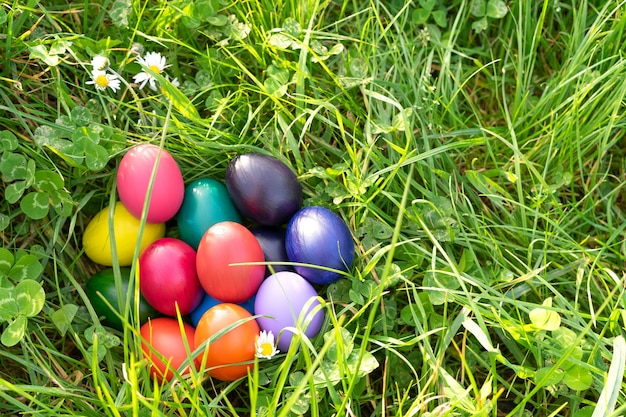 Colorful easter eggs on green grass. copy space.