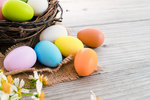Colorful easter eggs in nest with flower