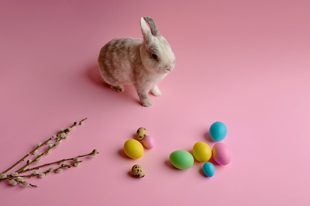 Colorful easter eggs and rabbit on pink background
