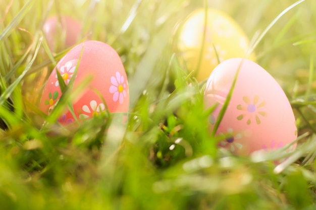 Colorful easter eggs on the sunny green meadow.