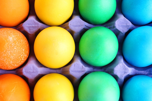 Colorful easter eggs in tray background
