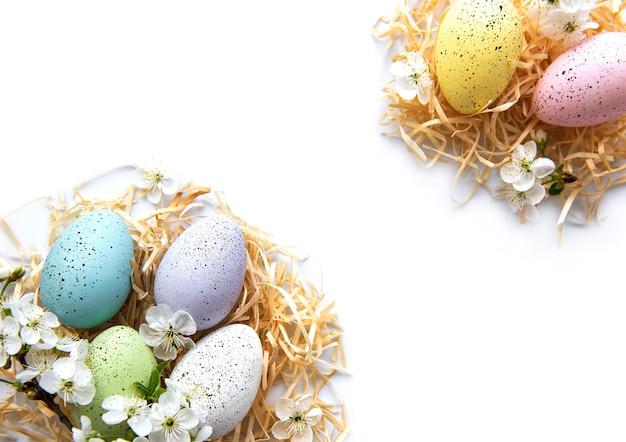 봄 꽃 꽃 흰색 절연과 다채로운 부활절 달걀.