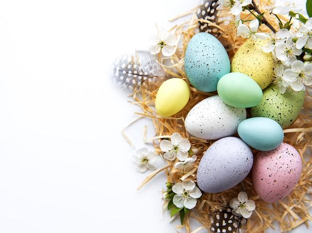 Красочные пасхальные яйца с цветами весеннего цветения изолированные