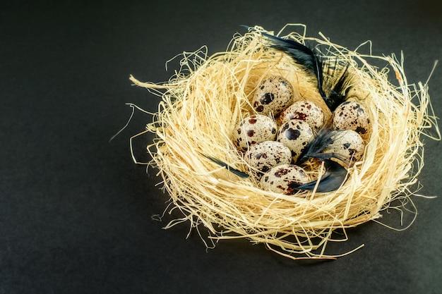 둥지에서 다채로운 부활절 메 추 라 기 계란
