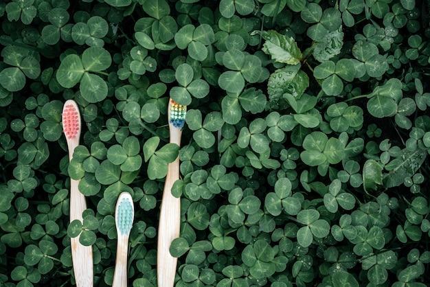 緑のクローバーの葉の背景にカラフルな環境に優しい竹の歯ブラシ