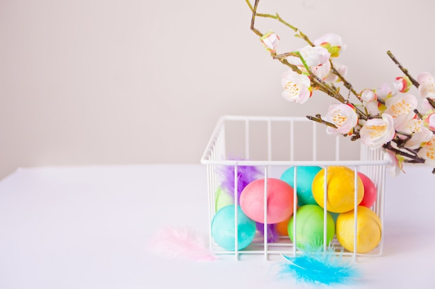 Colorful eggs for easter day in a basket and cherry blossom branch. copy space.