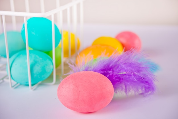 Colorful eggs for easter day with violet feather
