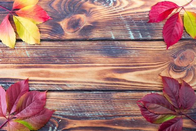 素朴な木製の背景にカラフルな秋のカエデの葉