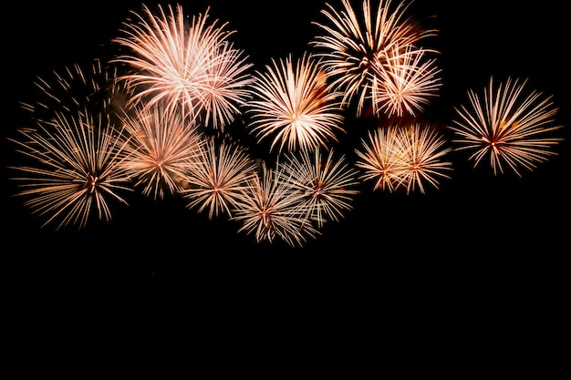 Colorful fireworks against a black night sky