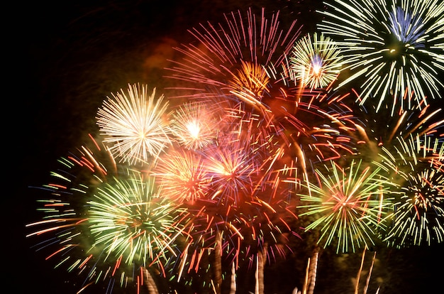 Colorful fireworks for the celebration