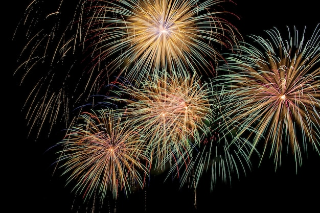 Colorful fireworks on a night sky background.