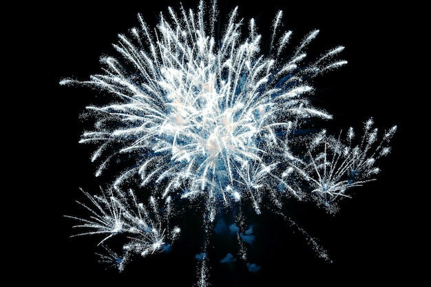 Colorful fireworks in the night sky. festive event