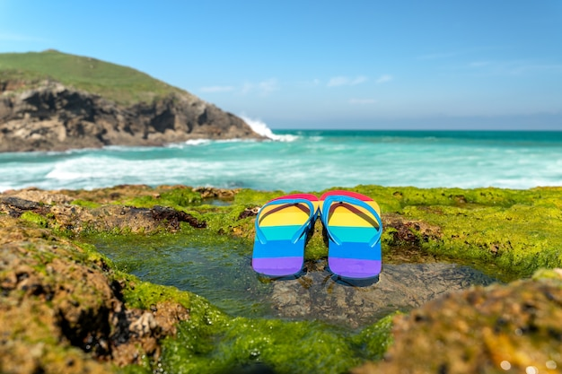 Colorful flip flops (lgbt flag) on ãƒâƒã'â¢ãƒâ'ã'â€ãƒâ'ã'â‹ãƒâƒã'â¢ãƒâ'ã'â€ãƒâ'ã'â‹the green algae of the rocky beaches of cantabria in spain.