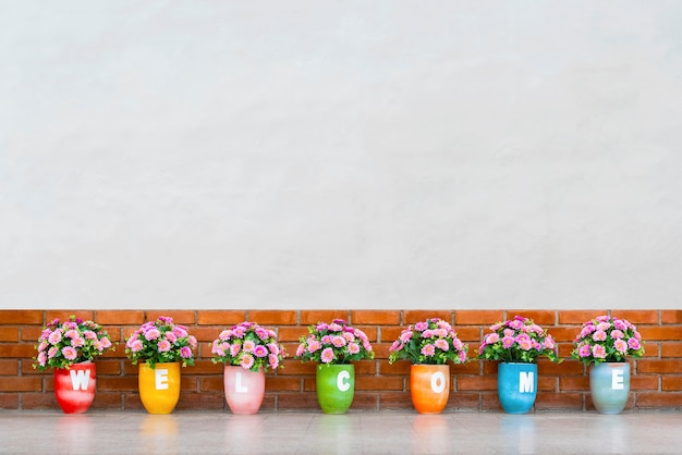 Colorful flower pots with welcome messages on pots with blank white concrete wall background.