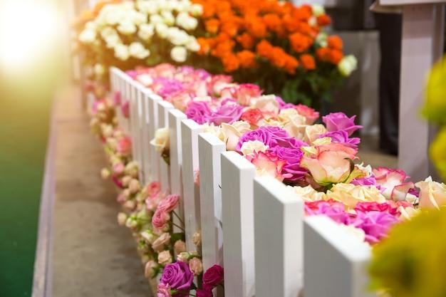 Разноцветные цветы у садового забора снаружи