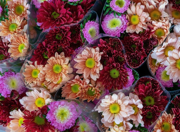 Of colorful flowers for sale during daytime