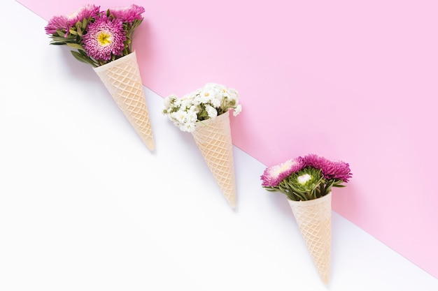 Colorful flowers in waffle ice cream cone on dual background