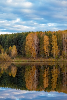 Colorful foliage tree reflections in calm pond water on autumn day