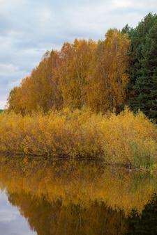 Цветастые отражения листвы дерева в спокойной воде пруда в прекрасный осенний день. тихое и красивое место для отдыха.