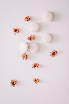 Красочные французские макароны и цветы на белой поверхности с копией пространства сверху