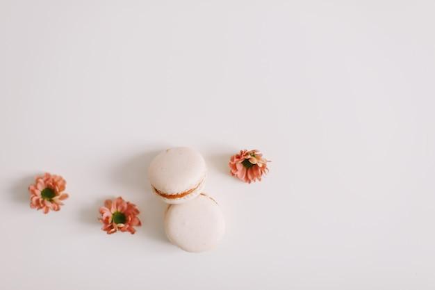 Красочные французские макароны и цветы на белой поверхности с копией пространства сверху Premium Фотографии