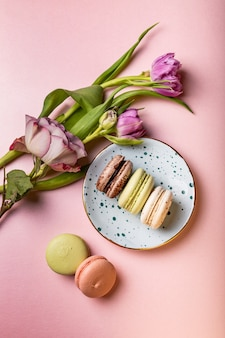 Colorful french macaroons with tulips and rose on pink , flat lay