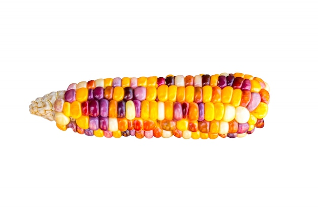 Colorful of fresh corn