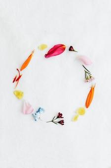 白い背景の上のカラフルな新鮮な花びらの丸いフレーム