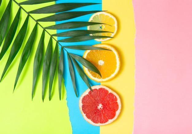 Красочная фруктовая тропическая композиция из свежих цитрусовых, лимона, апельсина и грейпфрута с пальмовыми листьями на ярком фоне. летняя еда творческая плоская планировка.