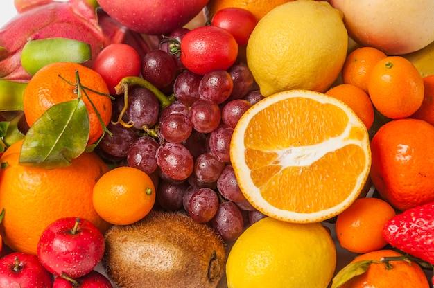 화려한 과일