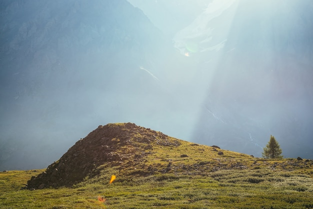日光の下で巨大な山の壁の背景に丘の近くの孤独な木とカラフルな緑の風景