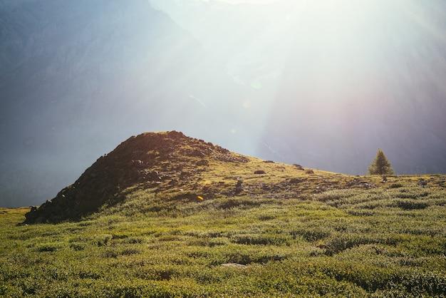 日光の下で巨大な山の壁の背景に岩の丘の近くの孤独な木とカラフルな緑の風景。太陽光線とフレアのあるミニマリストの日当たりの良い風景。最小限の高山ビュー。風光明媚なミニマリズム。