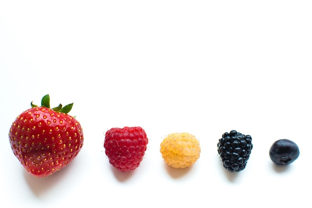 Colorful healthy fresh berries in a row on a white background