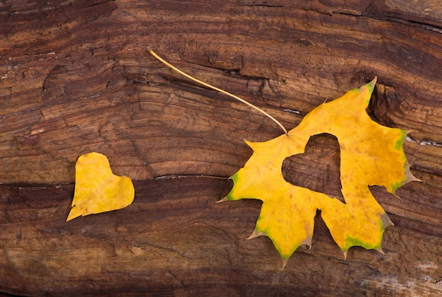 木製の背景に紅葉で作られたカラフルなハート。